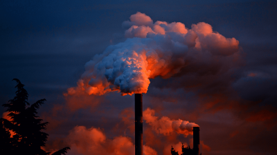 Carbon Emissions: Is Self-Management For You?